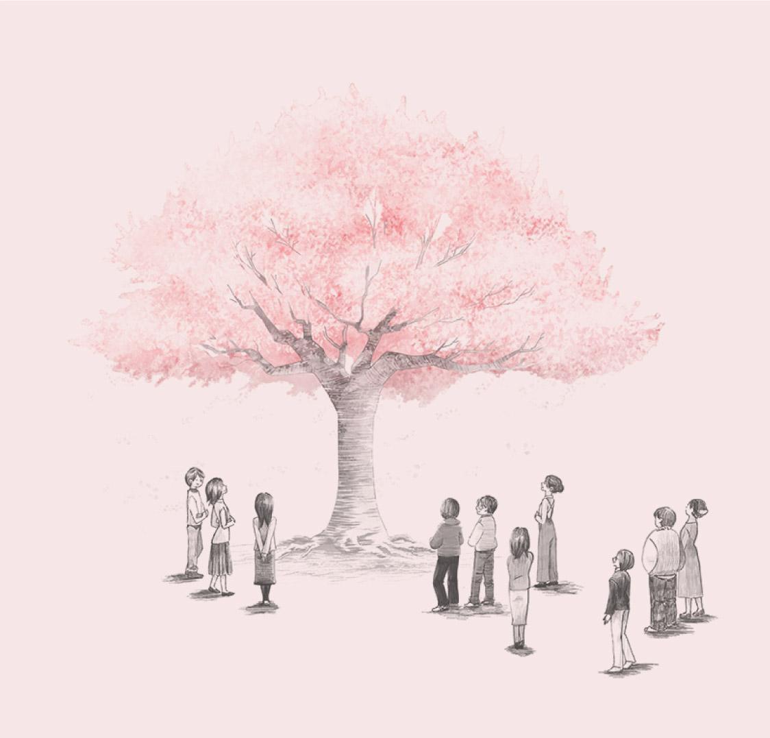 満開の桜イラスト